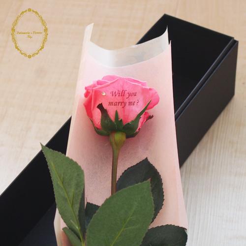バラの花びら メッセージ